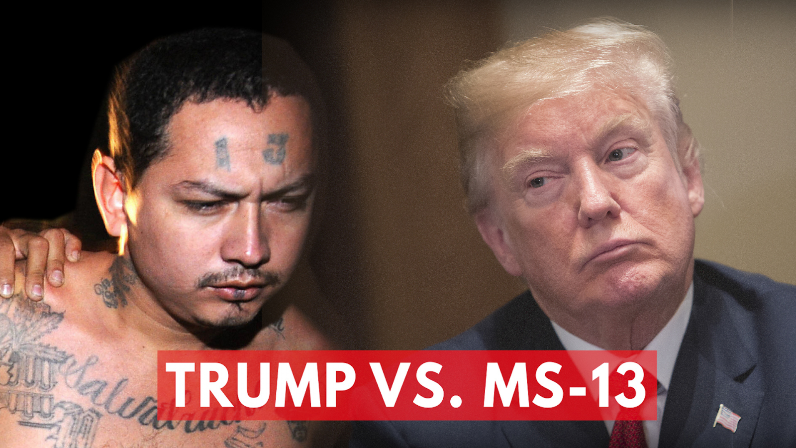 Image result for ms 13